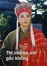 duong tang xin link (2)
